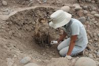 ¡Eureka! Nuevos entierros humanos fueron descubiertos en la Huaca El Rosal en el Parque de las Leyendas.