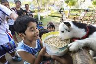 Las minigranjas son los lugares perfectos para que los niños tengan contacto directo con las crías de animales y aprendan a tratarlos con respeto y cariño.