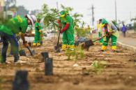 """Por una Lima más verde. Vecinos de todas las edades participan en el programa de arborización """"Planta un árbol, nace una vida""""."""